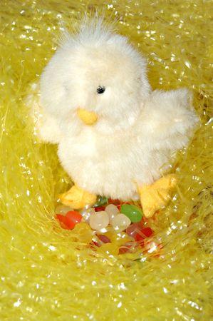 Nesting Easter Chick