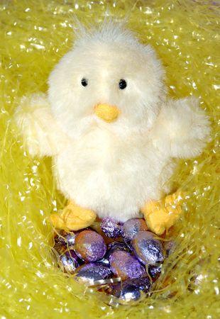 Nesting chick toy Archivio Fotografico