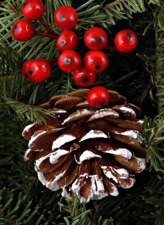 Berries, boughs & pine cone Archivio Fotografico