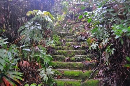 sumatra: Stairs up to Sibayak volcano  Berastagi in northern Sumatra  Indonesia