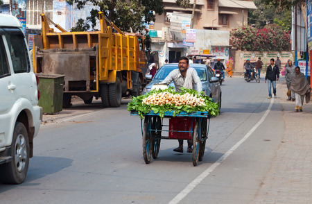 cart road: VRINDAVAN, INDIA - DEC 15, 2014:  Indian man carries a cart with vegetables on the road. Vrindavan is considered to be a holy place. The major tradition followed in the area is Vaisnavism. It is the place where Krishna spent his childhood days.