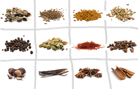 Set of different spices. Isolated on white background photo