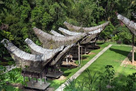 toraja: View of Tongkonan traditional old houses in  Buntu Pune village. Tana Toraja, Sulawesi. Indonesia