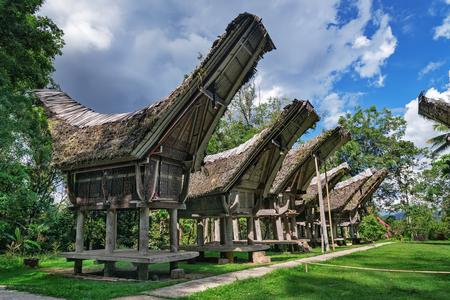 pune: Tongkonan traditional rice barns in in  Buntu Pune village. Tana Toraja, Sulawesi. Indonesia