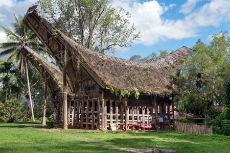 pune: Tongkonan traditional old houses in  Buntu Pune village. Tana Toraja, Sulawesi. Indonesia