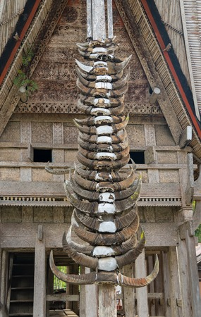 toraja: Buffalo horns at Tongkonan traditional houses in Kete Kesu village. Tana Toraja, Sulawesi. Indonesia Stock Photo