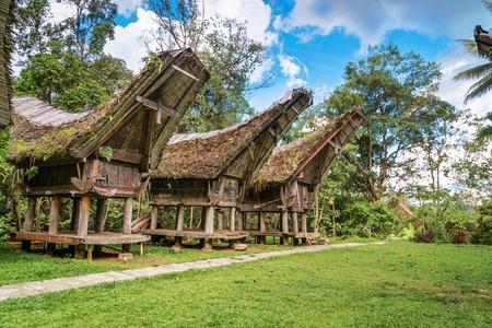 pune: Tongkonan traditional rice barns in Buntu Pune village. Tana Toraja, Sulawesi. Indonesia Stock Photo