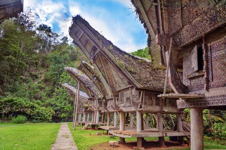 toraja: Tongkonan traditional rice barns in Buntu Pune village. Tana Toraja, Sulawesi. Indonesia Stock Photo
