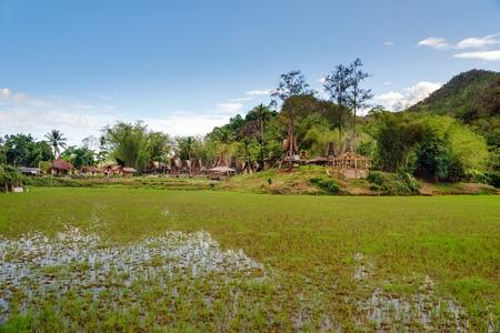 sulawesi: Tongkonan traditional village Kete Kesu. Tana Toraja, Sulawesi. Indonesia Stock Photo