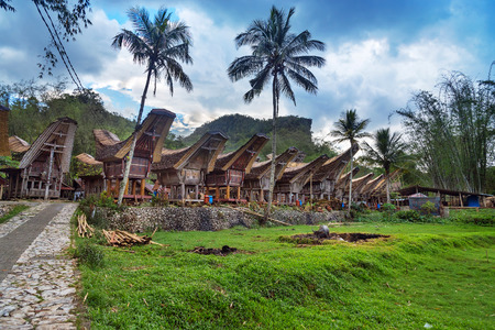 Tongkonan traditional village Kete Kesu. Tana Toraja, Sulawesi. Indonesia 免版税图像