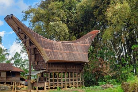 sulawesi: Tongkonan traditional house in Lempo village. Tana Toraja, Sulawesi. Indonesia