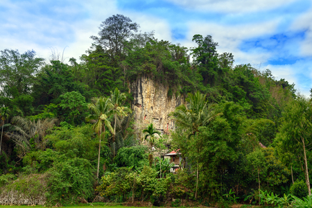 royal family: Suaya is cliffs old burial site of the royal family of Sangalla in Tana Toraja. Galleries of tau-tau guard the graves. South Sulawesi, Indonesia Stock Photo