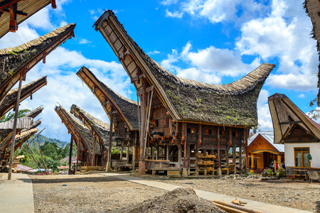 toraja: Tongkonan traditional houses in Palava village. Tana Toraja, Sulawesi. Indonesia Editorial
