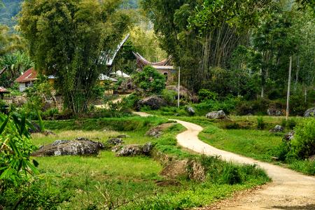 toraja: Road to Tongkonan traditional Lempo village. Tana Toraja, Sulawesi. Indonesia Stock Photo