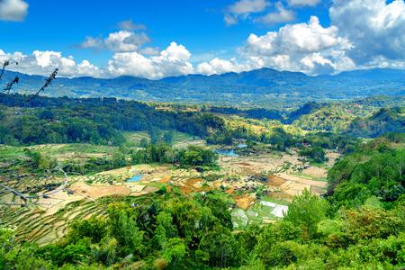 sulawesi: Green rice field terraces in Tana Toraja. South Sulawesi, Indonesia Stock Photo