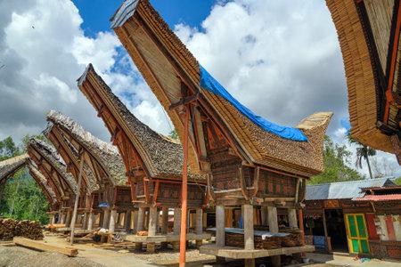 toraja: Tongkonan traditional rice barns and house in Palava village. Tana Toraja, Sulawesi. Indonesia Editorial