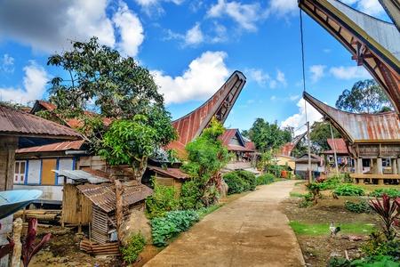 toraja: On the road in Tongkonan traditional Lempo village. Tana Toraja, Sulawesi. Indonesia