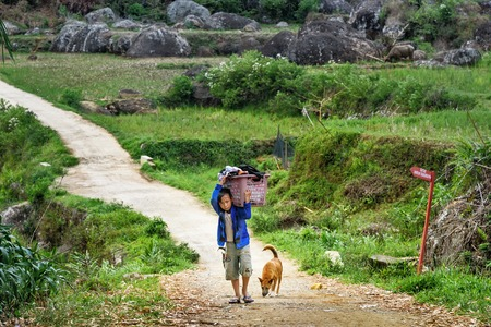 toraja: Tana Toraja, Indonesia - Dec 09, 2015: Unidentified Indonesian boy carries big basket with laundry on the road from Lempo village. South Sulawesi Editorial