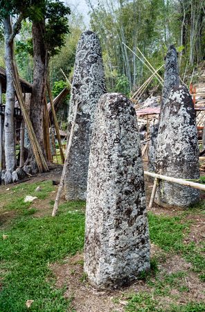 megaliths: Ceremony site with megaliths. Bori Kalimbuang or Bori Parinding. It is a combination of ceremonial grounds and burials. Tana Toraja. South Sulawesi, Indonesia