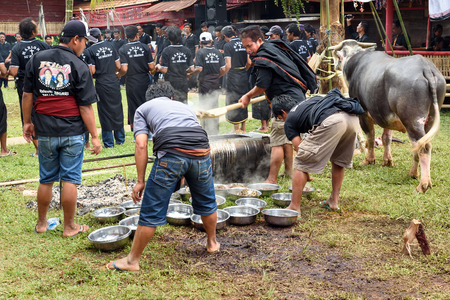 toraja: Tana Toraja, Indonesia - Dec 10, 2015: Men impose buffalo meat from cauldron to plate at the funeral ceremony. In Toraja the funeral ritual is the most elaborate and expensive even. South Sulawesi