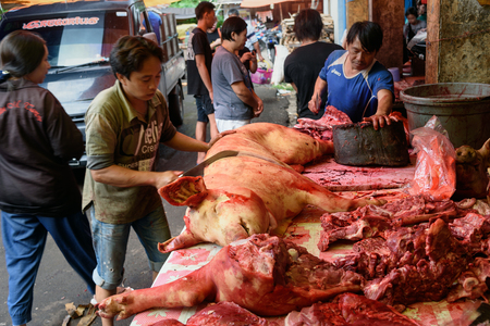 terribly: Tomohon, Indonesia - Dec 23, 2015: Indonesian man cuts the pig on Tomohon Traditional Market. North Sulawesi