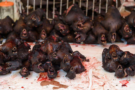 terribly: Roasted bats on Tomohon Traditional Market. North Sulawesi. Indonesia