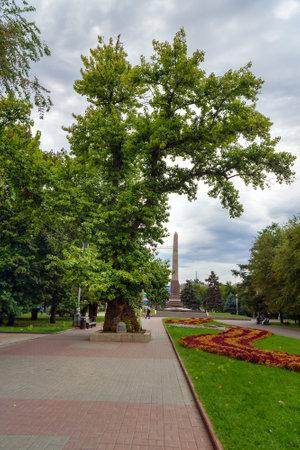 arbol alamo: Volgogrado, Rusia - 31 de agosto 2016: álamo Memorial en la Plaza de los combatientes caídos. Es el único árbol que queda después de la batalla de Stalingrado Editorial