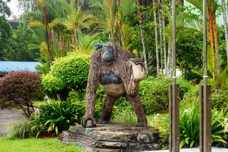 Kuching, Maleisië- 4 januari 2016: Semenggoh Nature Reserve werd opgericht in 1975 om de zorg voor wilde dieren, orang-oetans. Sarawak. Borneo