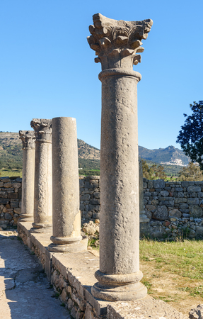 Roman ruins, ancient Roman city of Volubilis. Morocco. North Africa Stock Photo