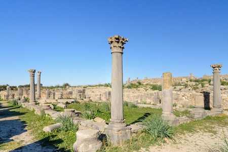 architecture monumental: Columns in Roman ruins, ancient Roman city of Volubilis. Morocco. North Africa