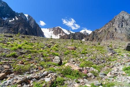 View on Glacier Aktru. Altai Republic, Siberia. Russia Stock Photo