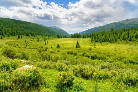 Valley on Ulagan plateau. Altai Republic. Russia Stock Photo
