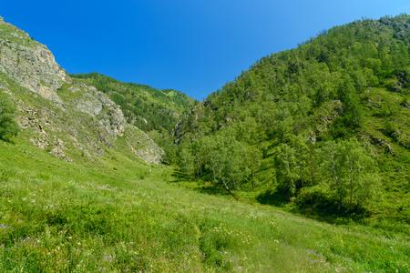Valley of Spirits in gorge Che-Chkysh, Yelanda. Altai Republic, Siberia. Russia