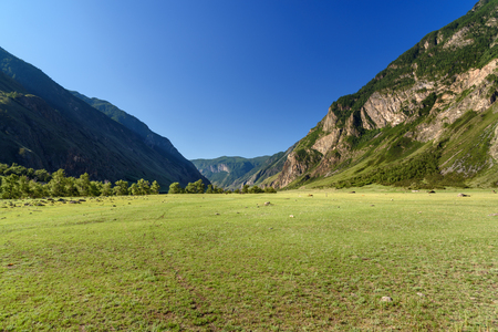 View on valley of Chulyshman river at the morning. Altai Republic, Siberia. Russia