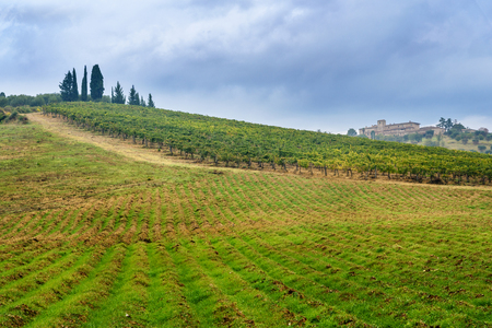 Landscape in Chianti region in province of Siena. Tuscany landscape. Italy