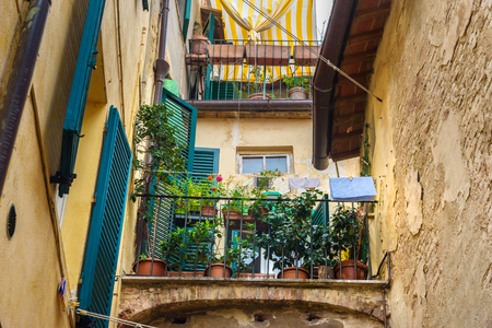 Balcony with flowers on medieval narrow street in old city Siena, Tuscany, Italy.