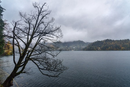 View of Lake Bled on rainy day in autumn. Slovenia 免版税图像