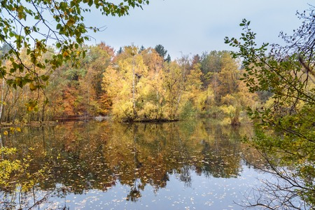 Colorful autumn forest on lake in Germany