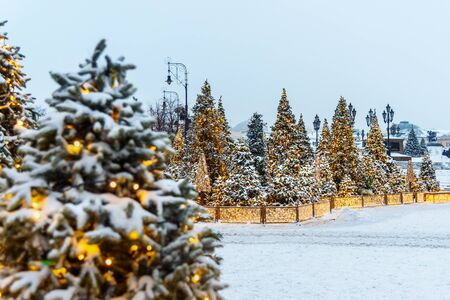 Snow-covered christmas trees on Manezhnaya square in Moscow. Russia