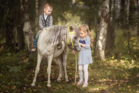 Little blond girl leading pony by bridle with her younger brother in summer forest