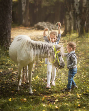 Little blond girl and boy with little horse pony and hugging it