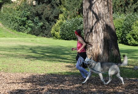 Young woman with a dog doing a jog in the park