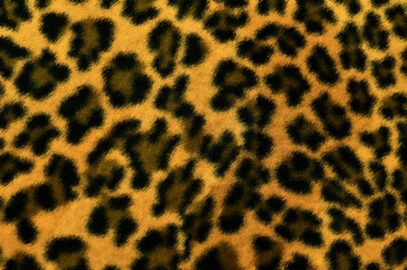 seamless leopard texture background photo