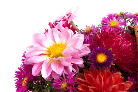 Picture of the basket of flowers on a white background photo