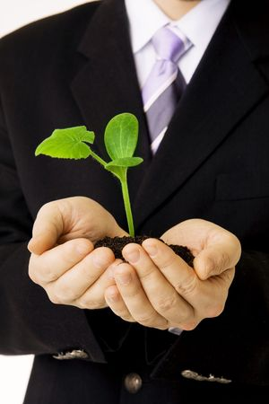 Picture about a businessman who keep in his hands a green sprout