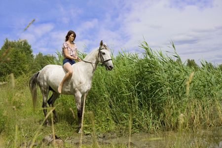 The image of a beautiful brunette girl with horse photo