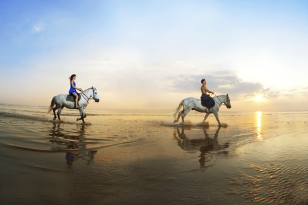 Picture a couple in love, which is galloping on a horse of the sea at sunset photo