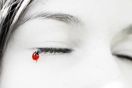Image of a beautiful little ladybug, which sit on the lashes girl photo