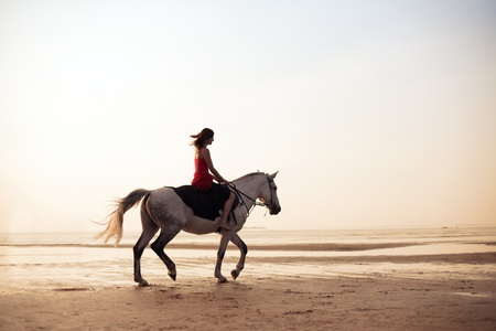 horses in field: The image of a girl riding a horse on the background of the sea Stock Photo