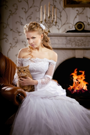 Image of luxury bride on a bright background Stock Photo - 10705388